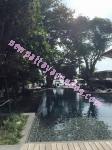 Zire Wongamat - Pattaya - Thailand (Maps, Location, Address, Price, Photo) - website