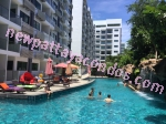 Club Royal - Pattaya - Thailand (Maps, Location, Address, Price, Photo) - website