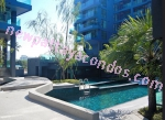 Acqua Condo - Pattaya - Thailand (Maps, Location, Address, Price, Photo) - website