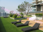 Cetus Beachfront Condo - Pattaya - Thailand (Maps, Location, Address, Price, Photo) - website